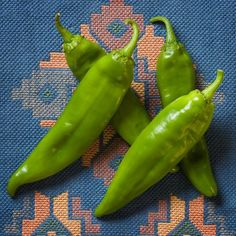Newmex 64 New Mexico Chile Hot Pepper Premium Seed Packet + Spicy Recipes, Mexican Food Recipes, Chile Picante, Mexico Chile, Hatch Chili, Burger Toppings, Pepper Seeds, Seed Packets, Stuffed Hot Peppers