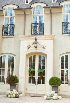 Doors, wrought iron window guards