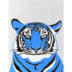 Giclée Tiger Print by London-based illustrator Marcus Butt (£25)