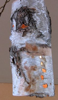 This is a Light. It's a Hanging Birch Bark Lamp/Light. I love it!