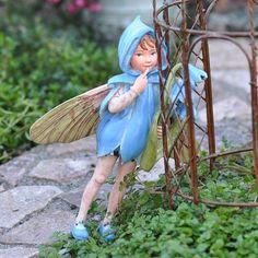Scilla Fairy Add an Accent,http://www.amazon.com/dp/B009P8BJ6M/ref=cm_sw_r_pi_dp_QiWDtb0G9F50GE94