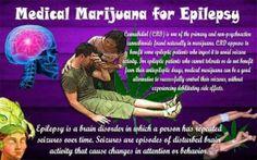 Medical Marijuana for Epilepsy