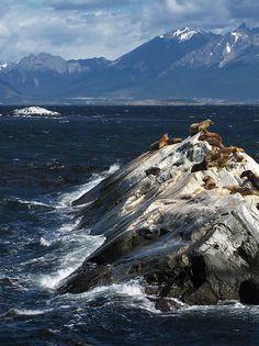 Canal de Beagle, Ushuaia, Arg.