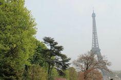 Torre Eiffel, o cartão postal de #Paris! #viagem #turismo