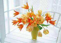 Восхитительные фото букетов из белоснежных и ярких цветов