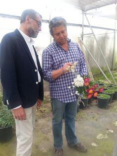 Curro Gonzalez The FlowerMan