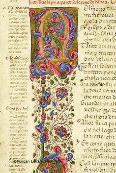 Decorated initial N with floreate ornament | Literary | Italy, Florence | 1345-1355 | The Morgan Library & Museum