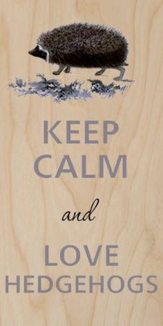 Keep Calm and Love Hedgehogs - Plywood Wood Print Poster Wall Art by Hat Shark Hat Shark http://www.amazon.co.uk/dp/B00G7459ZO/ref=cm_sw_r_pi_dp_bihKwb0HZBCEM