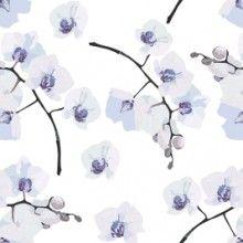 Papel de Parede Floral Orquídeas 02