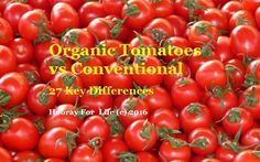 Organic Tomatoes vs Conventional