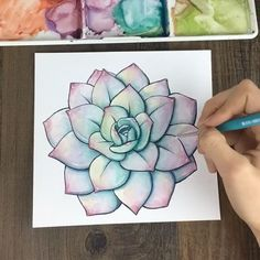 https://www.instagram.com/p/BMFufrTA5pl/