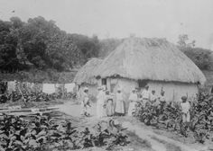 Early 1900s Photo Puerto Rico Adobe Huts Plantation Vintage Black White P B5 | eBay
