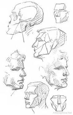 Drawing the human head, anatomy art tutorial Drawing The Human Head, Drawing Heads, Human Figure Drawing, Figure Drawing Reference, Anatomy Sketches, Anatomy Drawing, Anatomy Art, Basic Drawing, Drawing Lessons