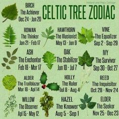 The Celtic Zodiac is based on the cycles of the moon. The year is divided into - Tattoo Pins The Celtic Zodiac is based on the cycles of the moon. The year is divided into Magick, Witchcraft, Celtic Astrology, Celtic Zodiac Signs, Celtic Symbols, Celtic Paganism, Celtic Runes, Druid Symbols, Irish Symbols