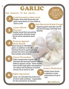 Garlic is amazing for boosting the immune system & fighting viruses. Here are many more health benefits of garlic. Health Diet, Health And Nutrition, Garlic Health Benefits, Benefits Of Eating Garlic, Garlic Soup, Garlic Clove, Turmeric Tea, Health Products, Healthy Life