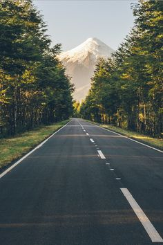 landscape-pics:   Road wesele. - Wesele Grudziądz - Zespół Orkiestra weselna