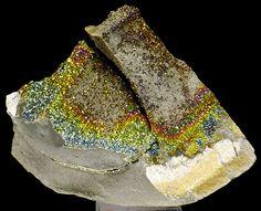 'Rare' Rainbow Pyrite on Matrix - 78 x 50 x 40 mm - 75 gr  Hierbij bied ik aan:'Rare' Rainbow Pyrite on Matrix: - Stuk uit eigen collectie!- Herkomst: Volga River Russia- Afmeting: 78 x 50 x 40 mm - Gewicht: 75 gram - Onbeschadigd- Inclusief labelDit object heeft altijd in een verlichte showcase gestaan en bevat geen stof. Echt een prachtige exemplaar wat thuis hoort in een verzameling. Dit object wordt zorgvuldig verpakt verzekerd verstuurd en het pakketje is volgbaar via een Track en tracé…