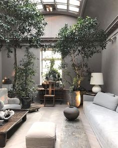 Awesome Tree Interior Design Ideas To Apply Asap Creating at tropical interior design will help you to escape some of the stresses of the day. At work, many … - Awesome Awesome Tree Interior Design Ideas To Apply Asap. Tree Interior, Interior Modern, Interior Design Living Room, Interior Architecture, Living Room Designs, Living Room Decor, Interior Plants, Living Rooms, Flat Interior
