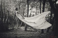 Fine Art Photography - by Alan Nart