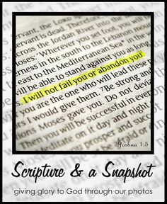 Scripture and a snapshot button by katielloyd, via Flickr