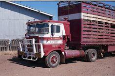 Photo by ROGER EVANS | wob2007 | Flickr Semi Trucks, Old Trucks, Clean Metal, International Harvester Truck, Kenworth Trucks, Old Tractors, Cattle, Trailers, Evans