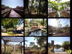 Você faz a Diferença: Ribeirão Preto - uma paixão, um amor que veio para...