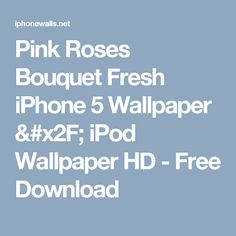 Pink Roses Bouquet Fresh iPhone 5 Wallpaper / iPod Wallpaper HD - Free Download