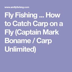 Fly Fishing ... How to Catch Carp on a Fly (Captain Mark Boname / Carp Unlimited)