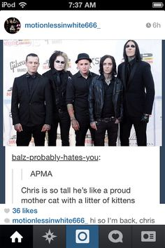 Damn it... Chris does look like a proud mother of 4 kittens.