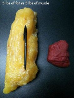 5 pounds of weight vs 5 pounds of muscle Truth! Most people don't believe this when I say it so LOOK at it!