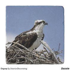 Osprey Trivet