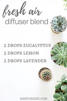 I love this fresh air essential oil diffuser blend recipe! It's the perfect way to create a healthier environment for you and your family. Add to your essential oil diffuser and pin for later! essential oils / essential oil diffuser blend recipes / essential oil diffuser blends / diffuser blends / diffuser blend recipes / essential oil diffuser blends house smells / essential oil diffuser blends air freshener
