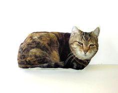 Large Custom Cat Pillow