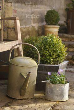 .love the galvanized planter with boxwood!