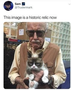 RIP Stan lee you changed my life forever and RIP grumpy cat Marvel Comics, Meme Comics, Memes Marvel, Dc Memes, Marvel Funny, Memes Humor, Funny Memes, Funny Pranks, Hilarious