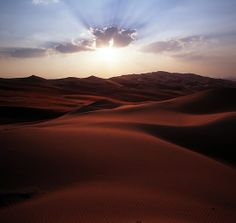 Liwa Oasis, Abu Dhabi