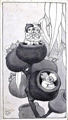 Book Illustrations - May Gibbs Woodland Creatures, Mythical Creatures, Children's Book Illustration, Book Illustrations, Bebe Nature, Australian Artists, Australian Icons, Australia Tattoo, Australian Wildflowers