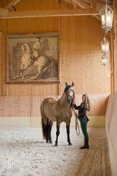 Schloss Amerang: FOTOS STALL - FOTOS STABLE
