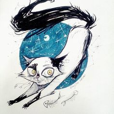 A new challenge : draw a cat. So😺 this is a cat 😺 😺 😺 😺 #cat #chat #minou #miaou #drawing #draw #dessin #art #artist #drawchallenge #challenge #crayon #style #stylo #stylobille #promarkers #creation #blue #blackandwhite #night #kimyonakokoro #nuit #etoile #star