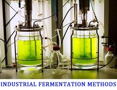 What is Industrial Fermentation Technology? What is a Fermenter? What are the Parts of a Fermenter? What are Batch and Fed-batch and Continuous Types of Fermentation? Windmill Generator, Learn Robotics, Steam Learning, Rich Kids Of Instagram, Electrical Projects, Plant Science, Weird Science, Science And Technology, Planer