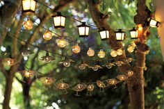 String lights from Pottery Barn