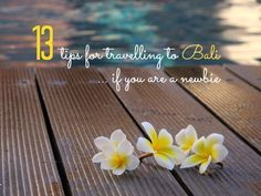 13 tips for travelling to Bali if you are a newbie
