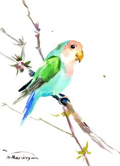 Pink Turquoise green Lovebird 12 x 9 in original by ORIGINALONLY