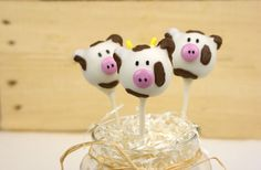 Cow Cake Pops! How cute are these little guys?!