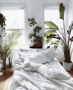 Bedroom Decor Fascinating Ideas On A Budget For Boho Bedroom With Plants And Textiles;Bohemian Bedroom Decor And Bedding Design Ideas We love this space themed bedroom ideas, a perfect fun learning in form of bedroom decoration for boys (and girls). Bed Design, Home Design, Interior Design, Interior Plants, Design Ideas, Design Inspiration, Interior Ideas, Jungle Bedroom, Deco Studio