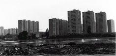 Fotografia de la Rambla de la Marina inundada. Es veu la masia de Cal Rei i l'hospital en obres. AAVV Bellvitge, 1960.    The flooded Marina's broadwalk, Bellvitge. You can see, also, the Cal Rei country house and the hospital under construction. AAVV Bellvitge, 1960.