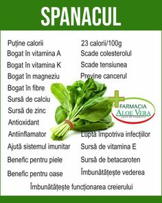 Herbs Indoors, Doterra, Good To Know, Metabolism, Aloe Vera, Green Beans, Dory, Cancer, Health Fitness