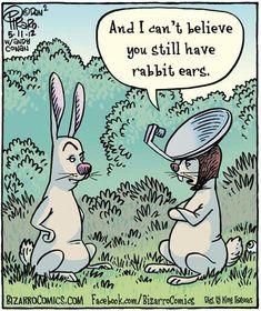 Rabbit ears -- from Bizarro Comics Easter Jokes, Easter Cartoons, Funny Cartoons, Funny Comics, Funny Jokes, Easter Funny, Funny Easter Quotes, Happy Easter Quotes, Cartoon Humor