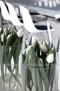 contemporary Easter | white tulip tanks
