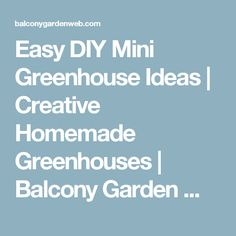 See these 11 DIY mini greenhouse ideas that are easy and worth trying. Diy Mini Greenhouse, Homemade Greenhouse, Greenhouse Effect, Greenhouse Gardening, Greenhouse Ideas, Gardening Tips, Starting Plants From Seeds, Starting A Garden, What Is A Conservatory
